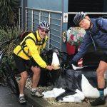 Tour Day 23 and 24 Munda Biddi Trail Cycle Ride
